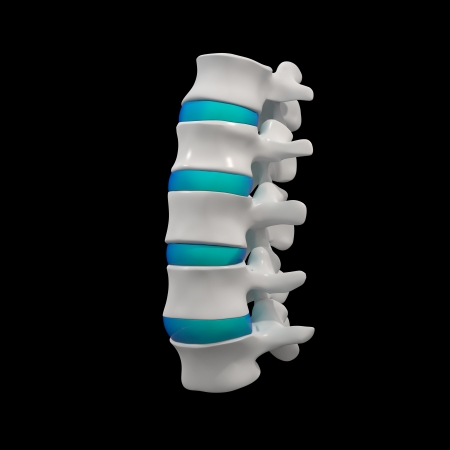 3d rendered illustration-lumbar side view