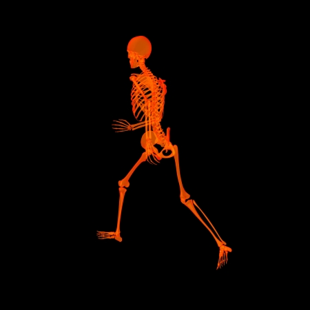 walking   skeleton by X-rays in red - back view