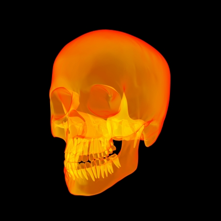 Isolated human x ray skull on black background - side view photo
