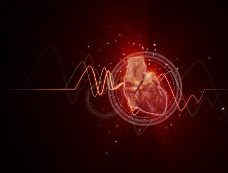 corazon humano: Ilustraci�n m�dica procesada 3D de un coraz�n humano Foto de archivo