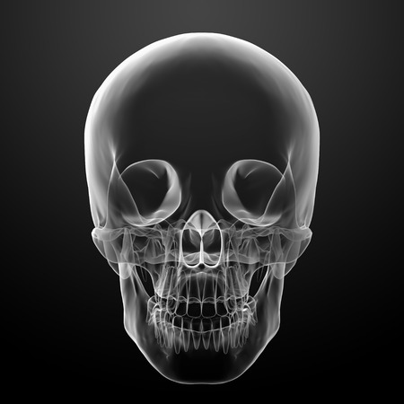 3d render skull on black background - front view photo
