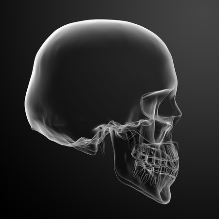 3d calavera sobre fondo negro - vista lateral photo