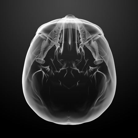 3d render skull on black background - top view photo