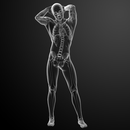 Human in x-ray view photo