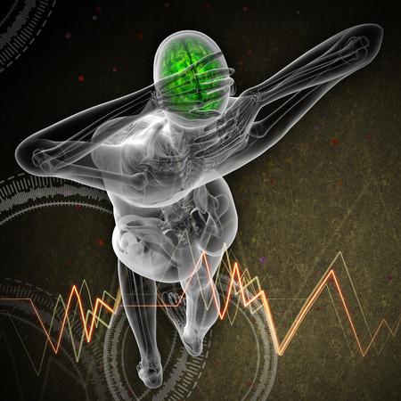 hipofisis: 3d ilustraci�n m�dica del cerebro humano - la vista superior Foto de archivo