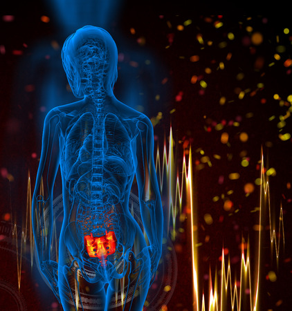sacral spine: 3d render medical illustration of the female sacrum bone - back view