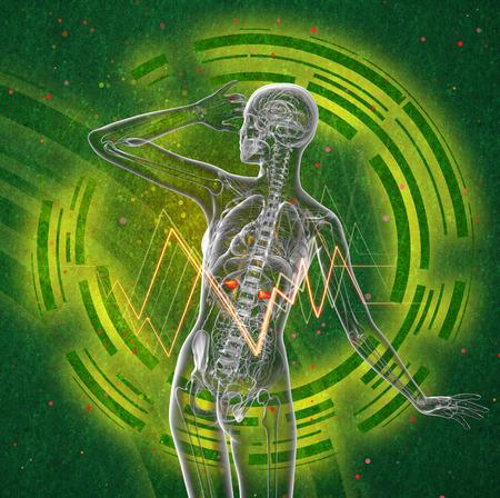 3d render medical illustration of the human adrenal glands - back view