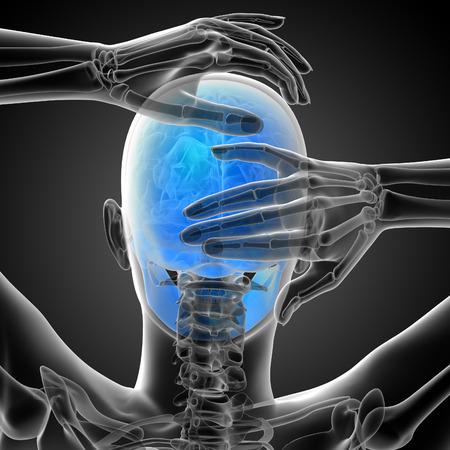 ethmoid: 3d render medical illustration of the skull - back view