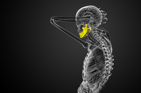 3d bone: 3d rendered illustration - jaw bone - side view