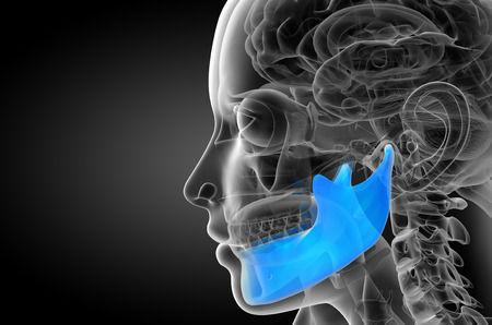 3d rendered illustration - jaw bone - side view