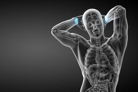 distal: Illustrazione di rendering 3D delle ossa carpali umane - vista frontale Archivio Fotografico