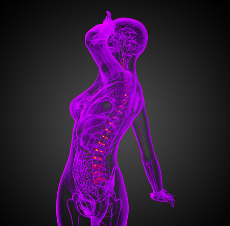 spinal disc: 3D medical illustration of the spinal disc - side view Stock Photo