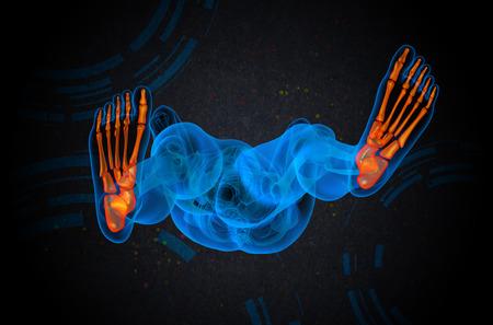 3d bone: 3d render medical illustration of the foot bone - bottom view Stock Photo