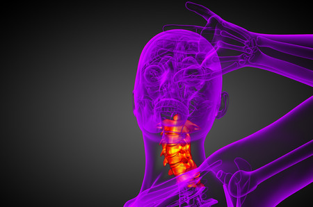 cervicales: 3d ilustraci�n m�dica de la columna cervical - Vista frontal Foto de archivo