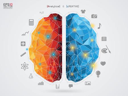 poligonos: ilustración vectorial de un cerebro en el fondo