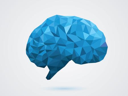 brain illustration: illustration of the brain Illustration