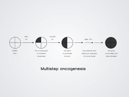 cytokinesis: vector illustration of the Multistep oncogenesis Illustration