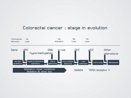 dna sequencing: Colorectal cancer  stage in evolution Illustration