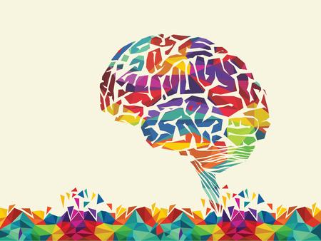 conocimiento: ilustración de colorido cerebro Vectores