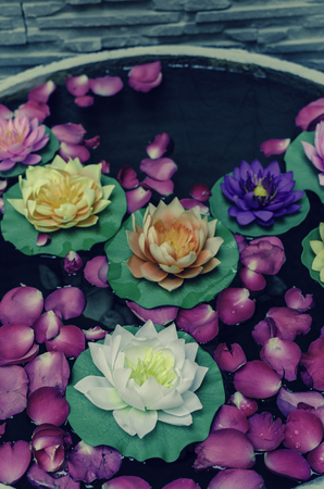 lotus artificial - Vintage Filter Stock Photo