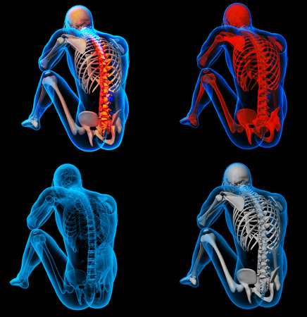 BACK bone: 3D rendering skeleton of the man with the backbone
