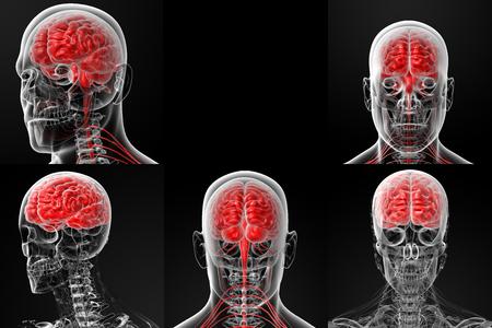 bowel: 3d rendering illustration of the male brain