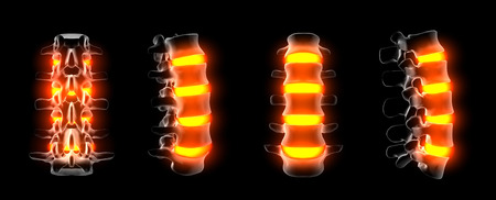 3d rendering of spine structure on black background