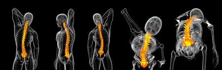 3d rendering of vertebrae Reklamní fotografie
