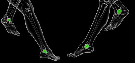 3d rendering illustration of the malleolus bone Stock Illustration - 105042464