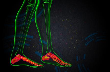 3d render medical illustration of the foot bone - side view