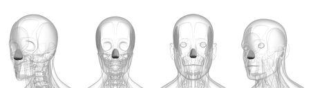 3d rendering medical illustration of metal dilator naris Imagens
