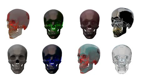 3d rendering illustration of skull anatomy collection