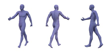 3d rendering illustration of violet human anatomy