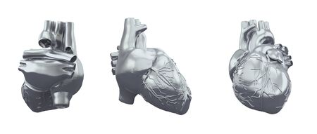 3d rendering illustration of heart