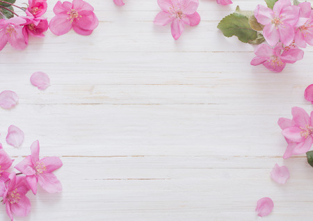 apple flowers on wooden background 免版税图像
