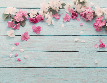 apple flowers on wooden background Stock Photo - 70502770