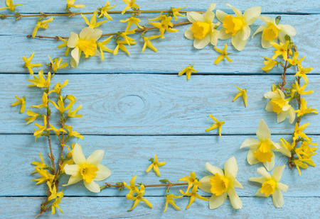 Spring yellow flowers in the old blue wooden background