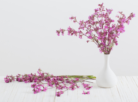 pink flowers in vase on white background Stock Photo