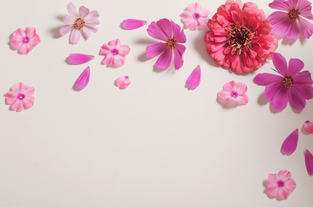 flowers on paper background