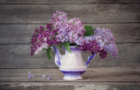 Still life with a blooming branch of lilac Stock Photo