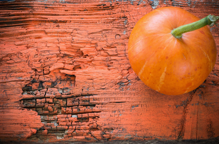 Pumpkin on orange wooden background