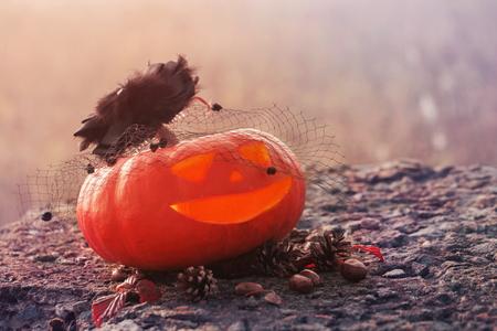 Halloween pumpkin outdoor