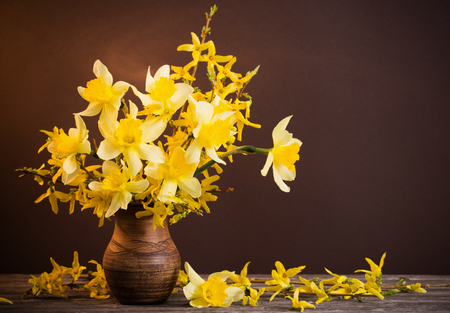 Daffodil In Vase On Brown Background Stock Photo Picture And