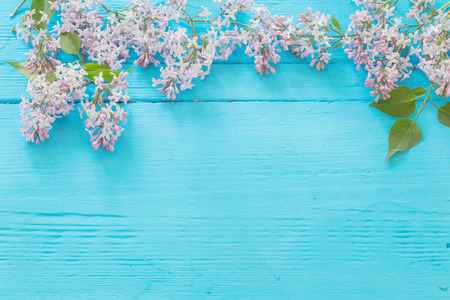 The beautiful lilac on a blue wooden background
