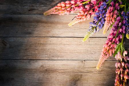 reloj de sol: hermosos lupinos sobre fondo de madera