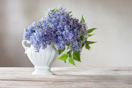 The beautiful lilac on white background Stock Photo
