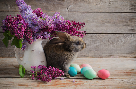 rabbit with Easter eggs on wooden background Stock Photo