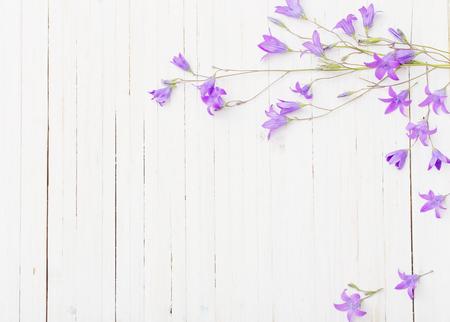 Bluebel florece fondo blanco de madera om Foto de archivo - 75648519