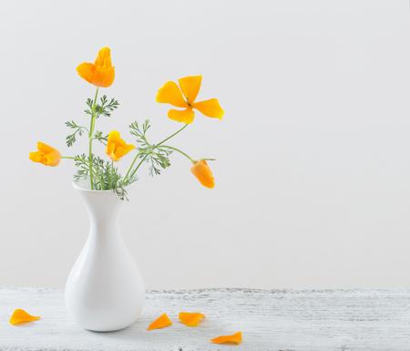 californian: Eschscholzia  in white vase