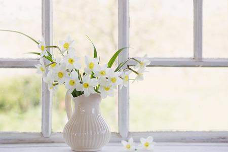 Narcisos en jarra en windowsill Foto de archivo - 83473159